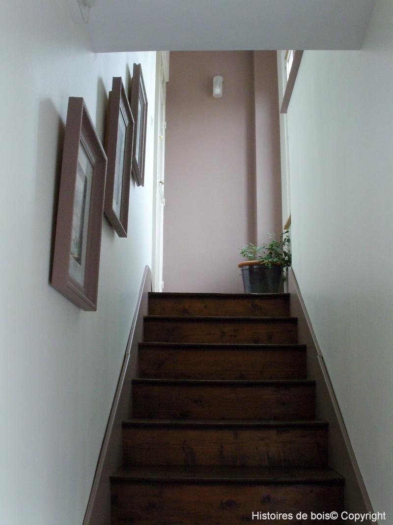 Recherche r novation d 39 un sol en carreaux de ciment for Escalier peint en taupe