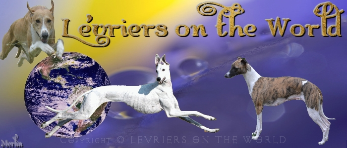 LEVRIERS ON THE WORLD