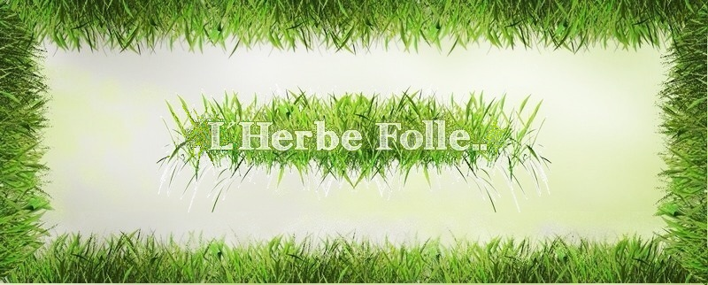 Forum l'Herbe Folle