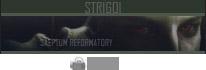 STRIGOIS STAFF