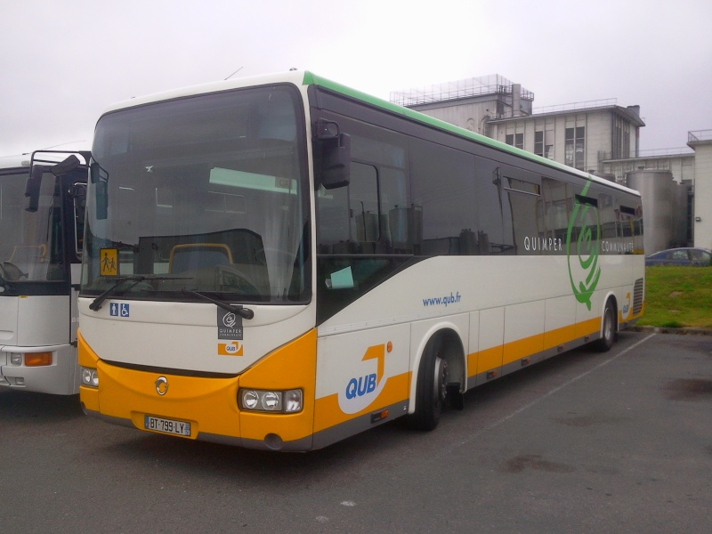 irisbu30.jpg