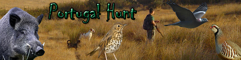 Portugal Hunt