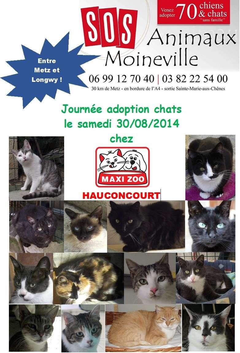 Collecte Maxi Zoo Hauconcourt le samedi 30/08/14 - SOS ANIMAUX