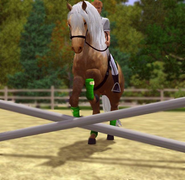Extension sur les chevaux sur sims 4!!!! Idée!!!!! - Answer HQ