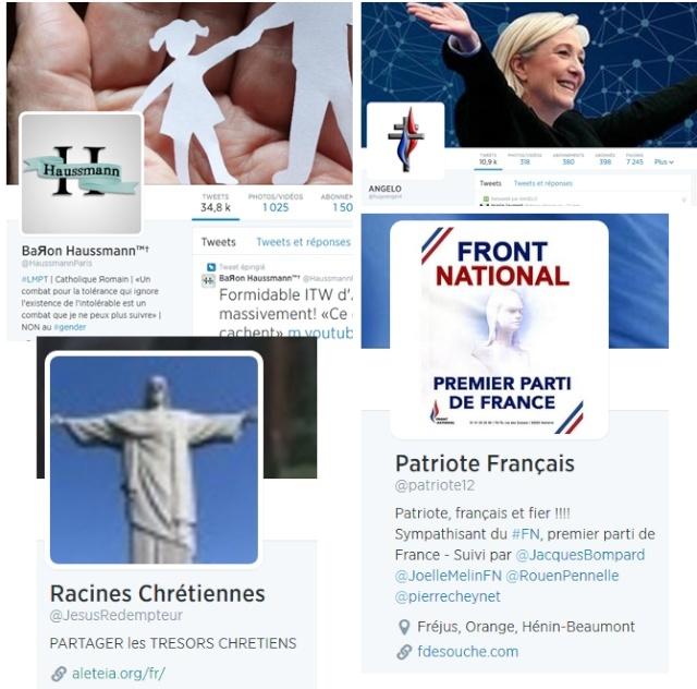 Exemples de comptes twitter ayant relayé l'appel au rassemblement anti-racailles.