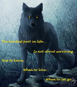 blue star sirius the wolf - photo #30