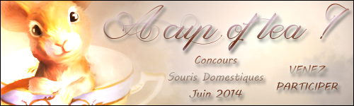 Concours juin 2014