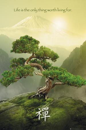 montagne zen