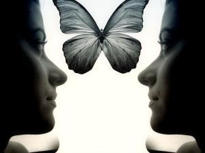 miroir papillon