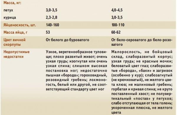 orlovp16.jpg