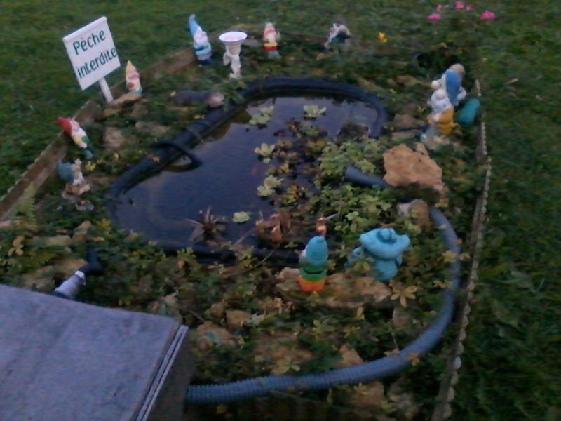 Mon bassin de jardin page 3 - Bassin de jardin nettoyage ...