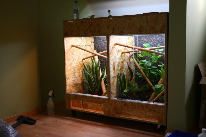 vends double terrarium fait maison 2 x 60x60x80 b. Black Bedroom Furniture Sets. Home Design Ideas