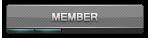 Member [LV2]