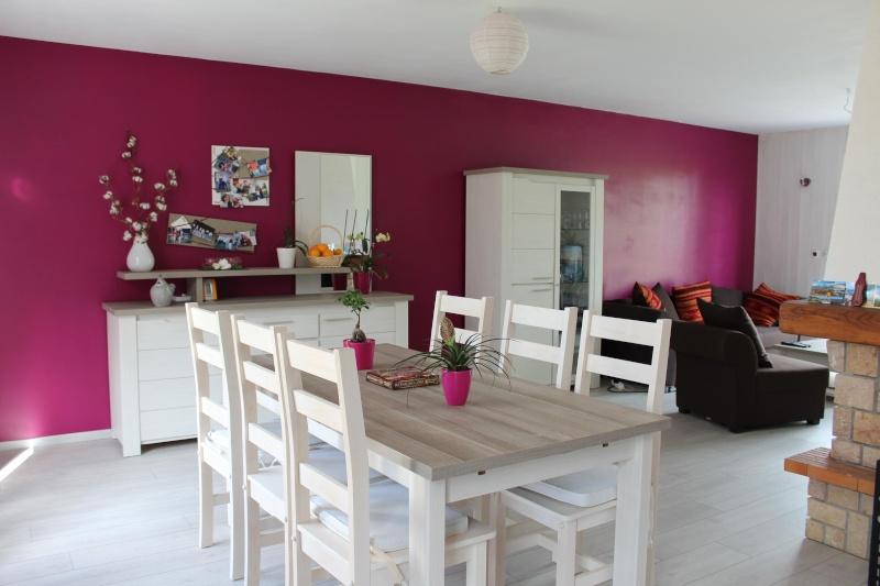 Salon s jour avec des meubles gris for Peinture aubergine cuisine
