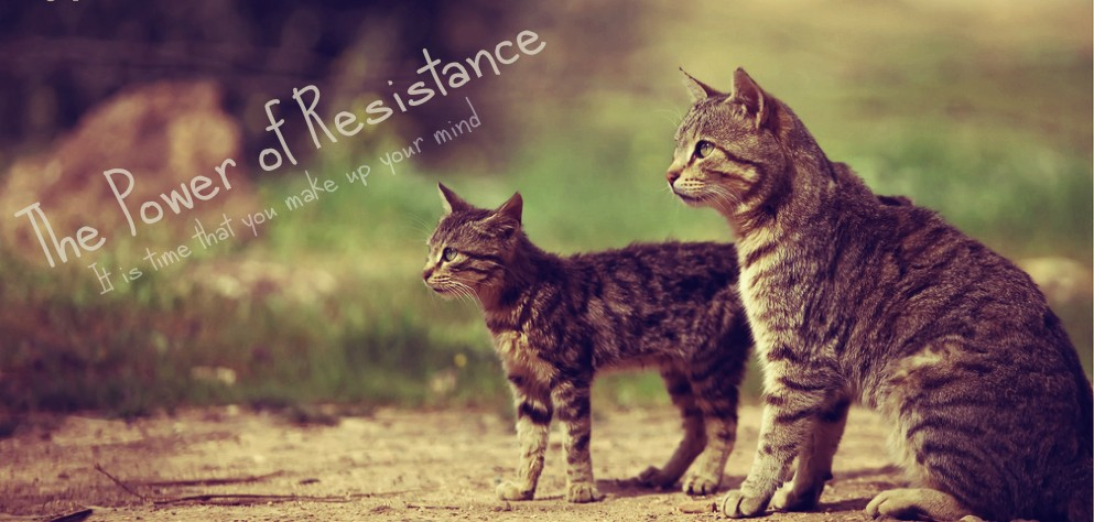 The power of resistance